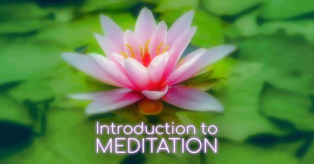 Introduction-to-Meditation-Waterlilly-01