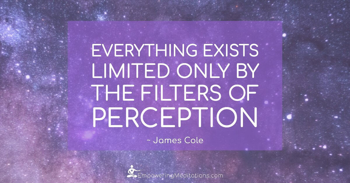Meme - Everything exists limited only by the filters of perception - Page