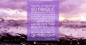 Meme - The veil of reality is so fragile - Page