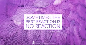 Meme - Sometimes the best reaction is no reaction - Page